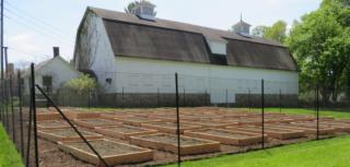 FES Community Garden